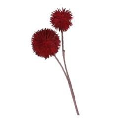 Fiore doppio dianthus rosso