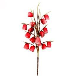 Fiore Enkianthus Vino colore rosso