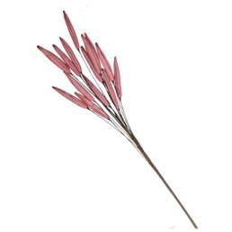 Canne di palude colore rosa H 120 cm